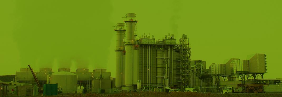 Környezettudatosság és zöld gazdaság